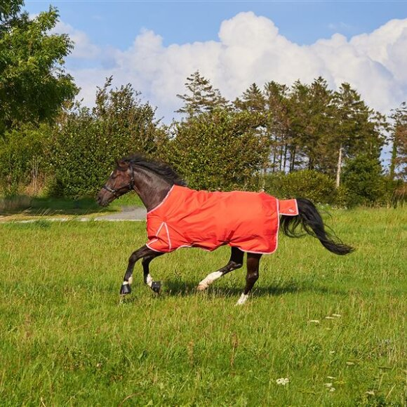 Rider By Horse - RBH SPORT 200G