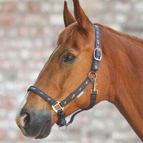 Waldhausen - Grime med hestemotiv