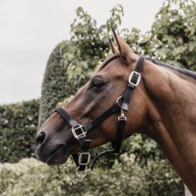 Kentucky horsewear - Plaited nylon halter